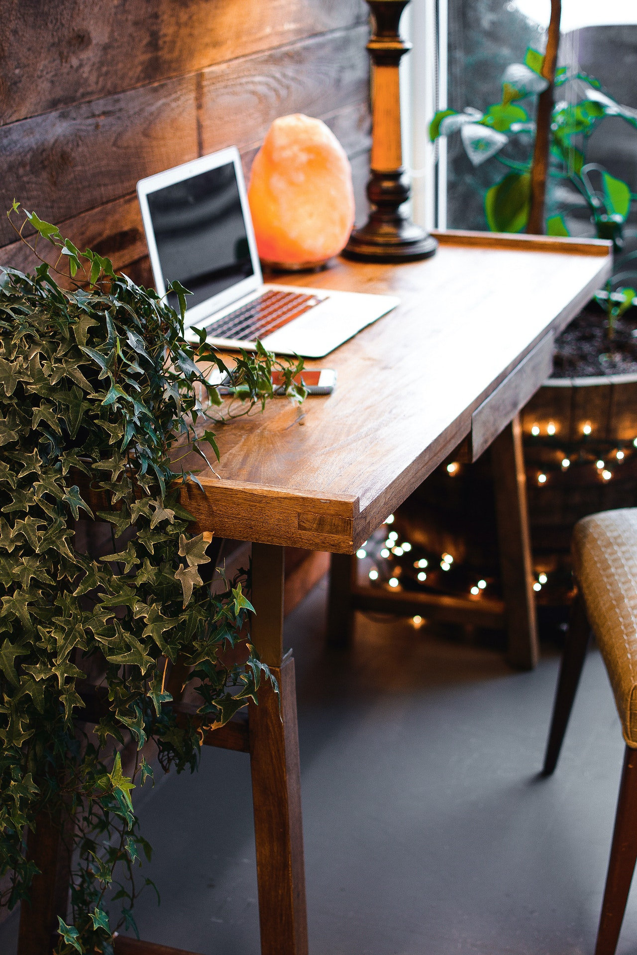 Home office with laptop and plants