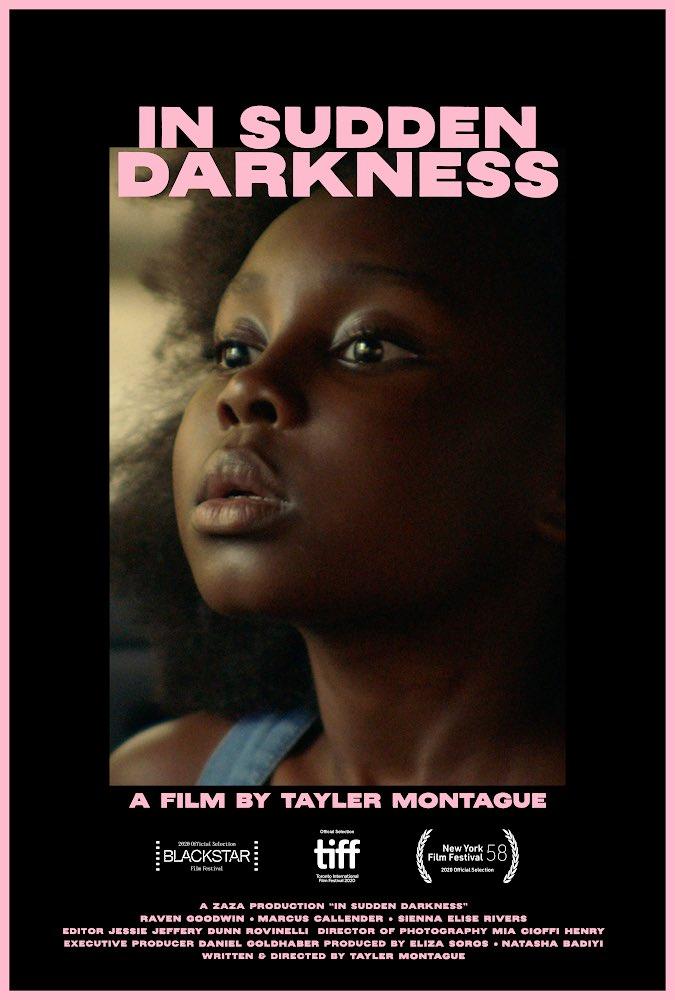 'In Sudden Darkness' by Tayler Montague